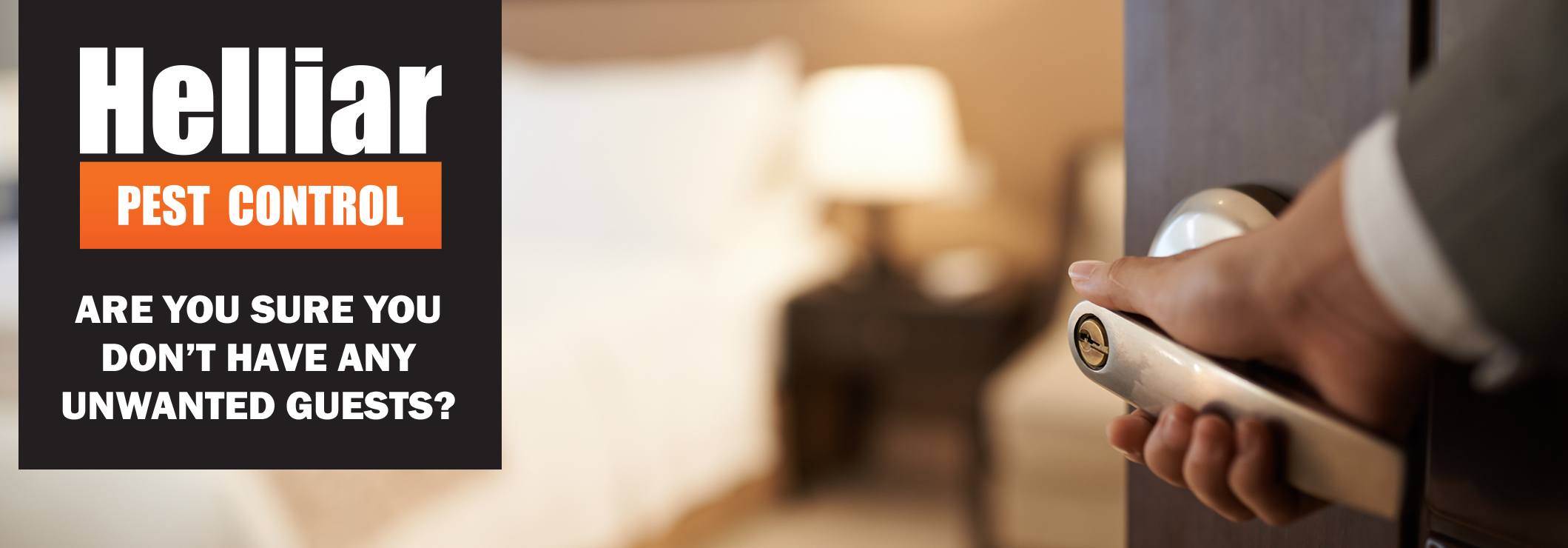 common pests in hotels